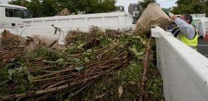 La gestion des déchets verts, comment faire?