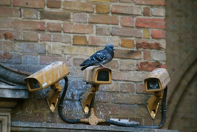 Pourquoi installer une caméra de vidéosurveillance ?
