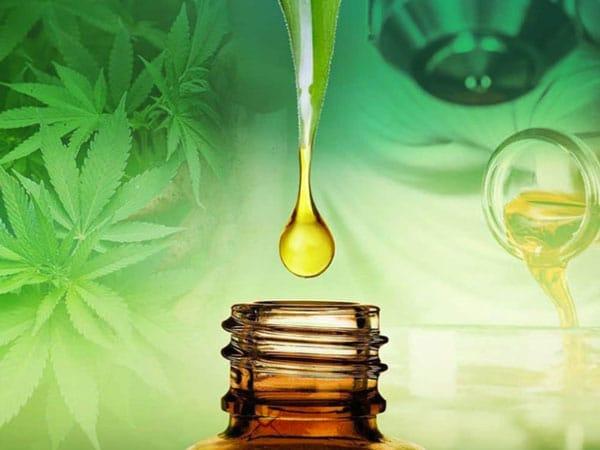 Quels sont les effets de l'huile de CBD sur la maladie de Parkinson ?