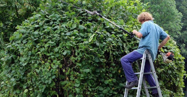 Les outils indispensables pour travailler en tant que paysagiste