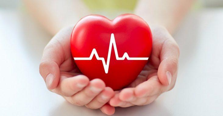maladies-cardio-vasculaires